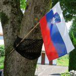 Vse najboljše, Slovenija