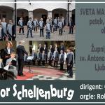 Zaključni koncert Deškega zbora Schellenburg