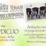 Avdicija za Deški zbor Schellenburg
